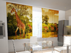 Pimennysverho GIRAFFES IN THE KITCHEN 200x120 cm ED-98446