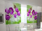 Läbipaistev kardin Lilac tulips in the kitchen 200x120 cm ED-98575