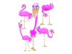 Seinakleebis Flamingos 65x85 cm ED-98904