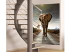 Fleece kuvatapetti ELEPHANT 180x202 cm ED-99099