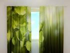 Затемняющая штора Leaves 240x220 cm