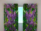 Полузатемняющая штора Lilac 1, 240x220 см ED-99341