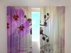 Полузатемняющая штора Lilaceous orchid 240x220 см ED-99356