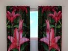 Полузатемняющая штора Lilies in the garden 240x220 см ED-99359