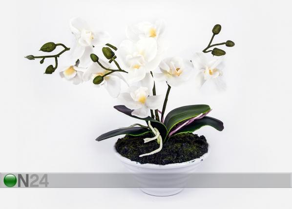 Kunstlill Valge orhidee h30 cm EV-106494