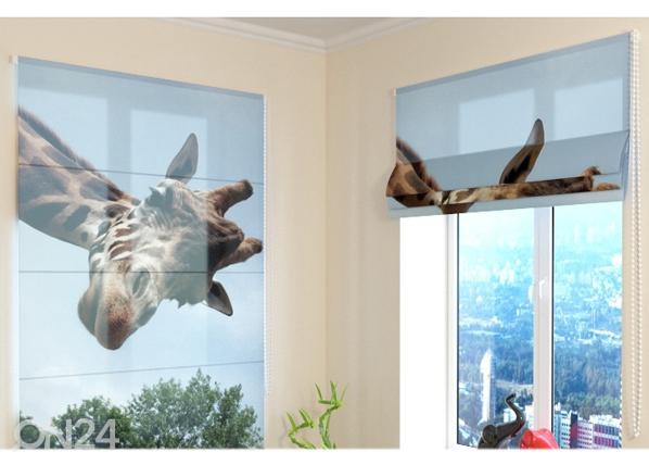 Poolläbipaistev roomakardin Girafe ED-108732
