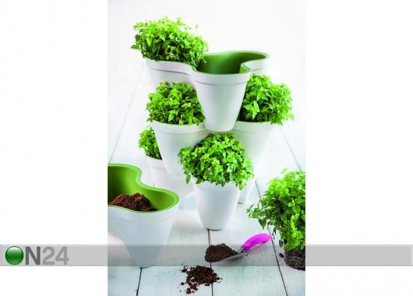 Istutuspott Keter Ivy Planter HU-109003