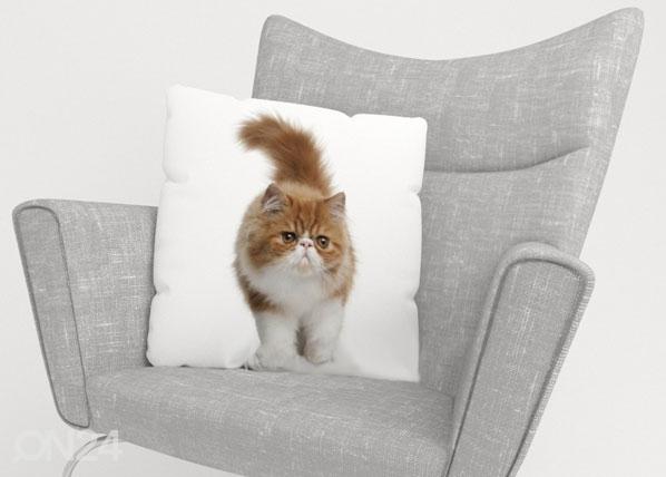 Koristetyynyliina FLUFFY CAT ED-123716