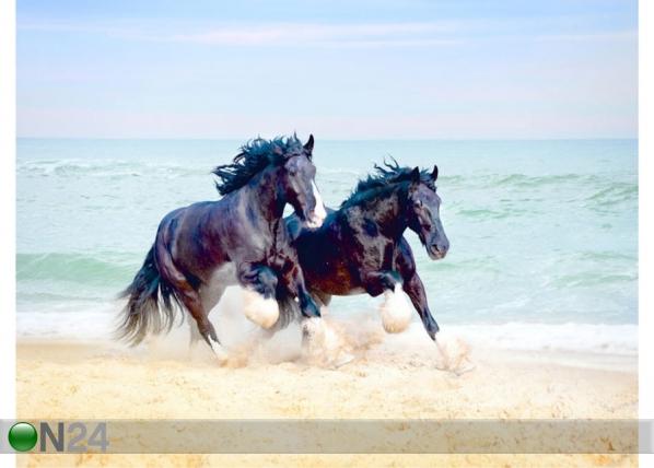 Fliis-fototapeet Horses 360x270 cm ED-128172