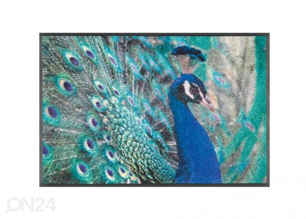 Matto PAVONE 50x75 cm A5-128286