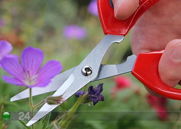 Ножницы для растений PR-129949