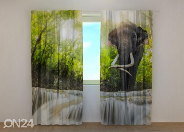 Poolpimendav kardin Big Elephant 240x220 cm ED-134185