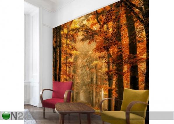 Fleece-kuvatapetti Fairy Forest in Autumn ED-143480