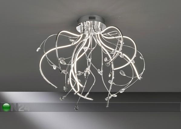 Laelamp Emily LED AA-174294