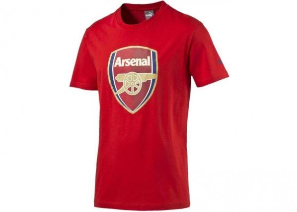 Laste jalgpallisärk Puma Arsenal Football Club Fan Tee Junior 74929701 TC-185783