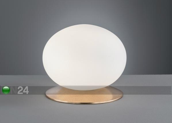 Настольная лампа Antony AA-187068
