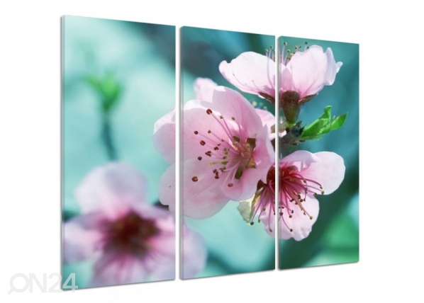 Kolmeosaline seinapilt Cherry blossoms 3D ED-194397