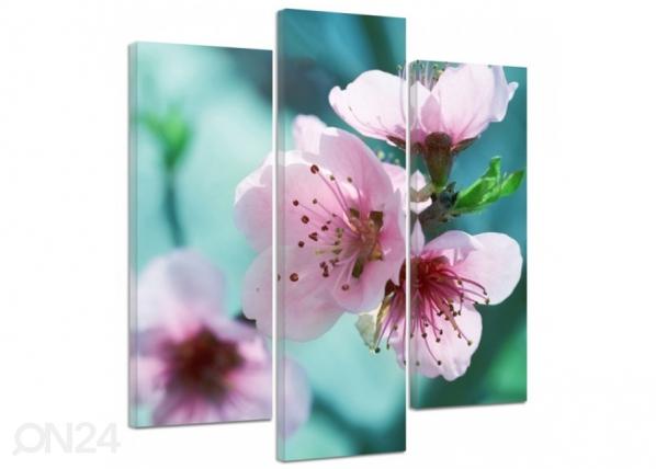Kolmeosaline seinapilt Cherry blossoms 3D ED-194398