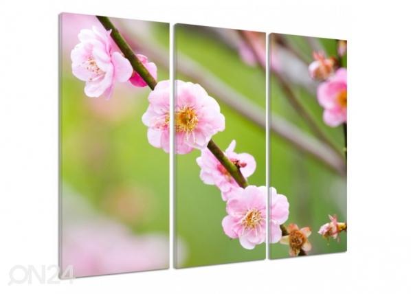 Kolmeosaline seinapilt Fruit tree blossom 3D 90x80 cm ED-194403