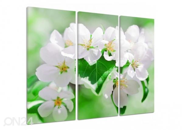Kolmeosaline seinapilt Cherry blossoms 2 3D ED-194408