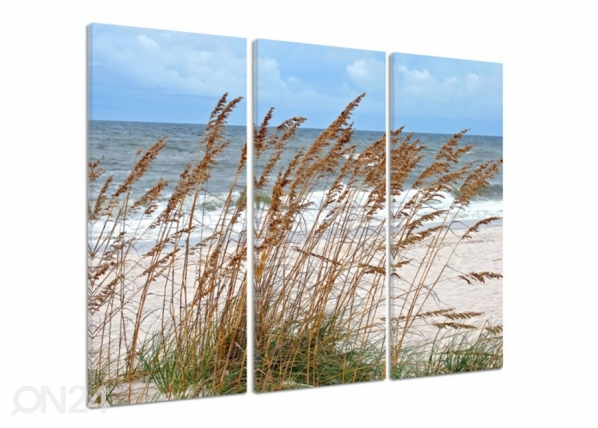 Kolmeosaline seinapilt Grass by the sea 3D 90x80 cm ED-194479
