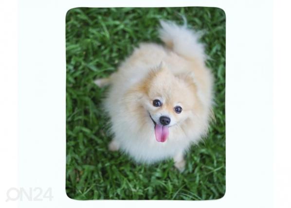 Fleecepeitto Happy Pomeranian Dog ED-221245