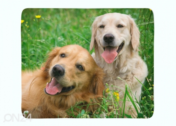 Fleecepeitto Labradors Retrievers in the Meadow ED-221249