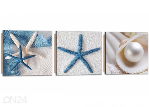 Kolmeosainen seinätaulu Starfish on the sand ED-224234