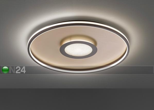 Потолочный светильник LED Bug AA-228886