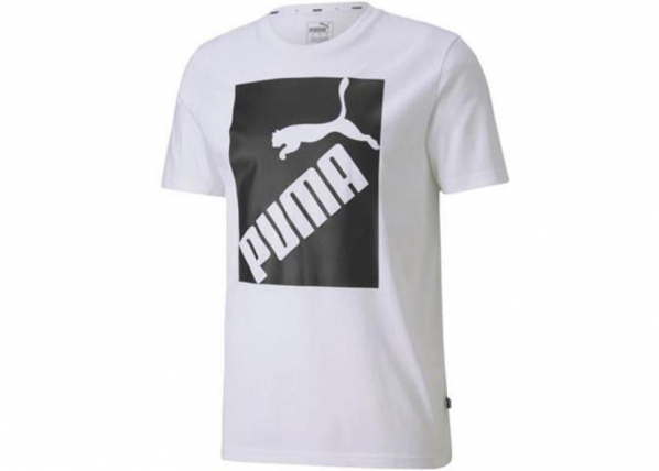 Miesten vapaa-ajanpaita Puma Big Logo Tee M 581386 02 TC-250277