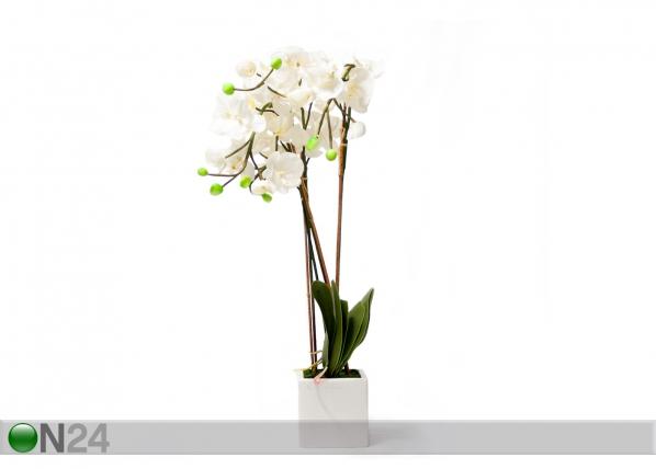 Kunstlill Valge orhidee 88 cm EV-69040