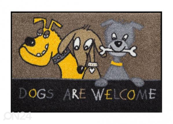 Matto DOGS ARE WELCOME 50x75 cm A5-84587