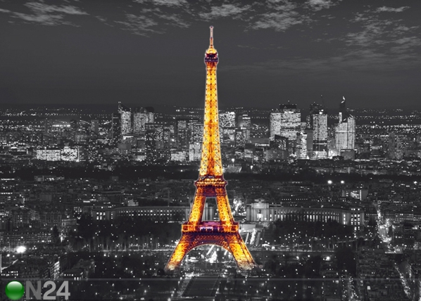Fliis-fototapeet Night in Paris 360x270 cm ED-94817