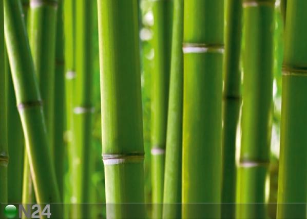 Fliis-fototapeet Bamboo 360x270 cm ED-94825