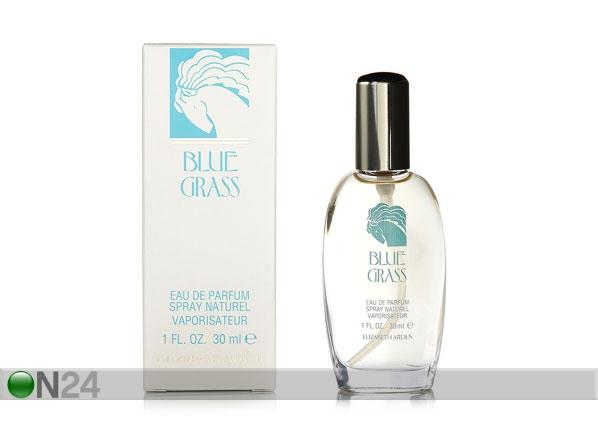 Elizabeth Arden Blue Grass EDP 30ml NP-97003