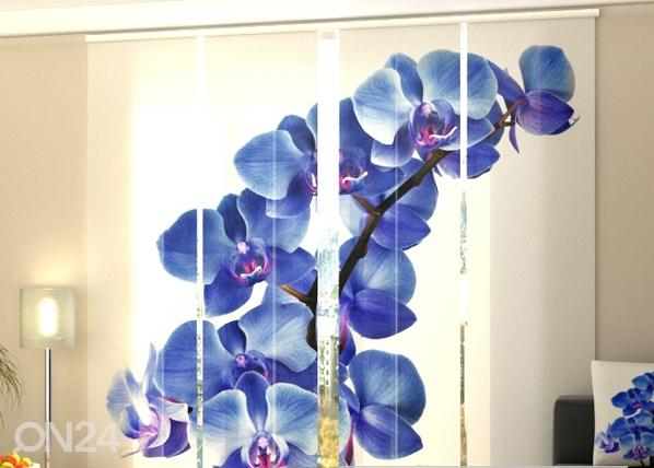 Läpinäkyvä paneeliverho BLUE ORCHIDS 240x240 cm, Wellmira