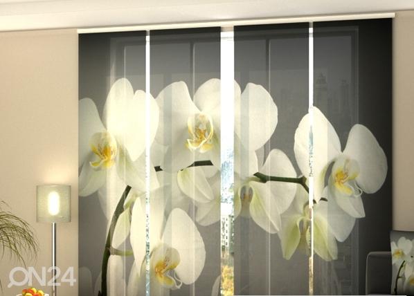 Läpinäkyvä paneeliverho SONG ORCHIDS 240x240 cm, Wellmira