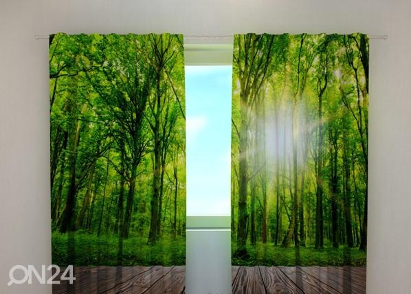 Läpinäkyvä verho FOREST AT THE DOORSTEP 240x220 cm, Wellmira