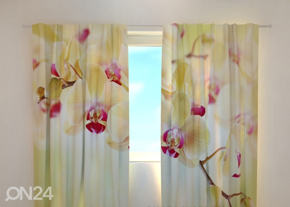 Pimendav kardin Goldish orchids 240x220 cm ED-98079