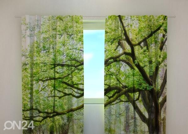 Läpinäkyvä verho GREEN TREE 240x220 cm, Wellmira