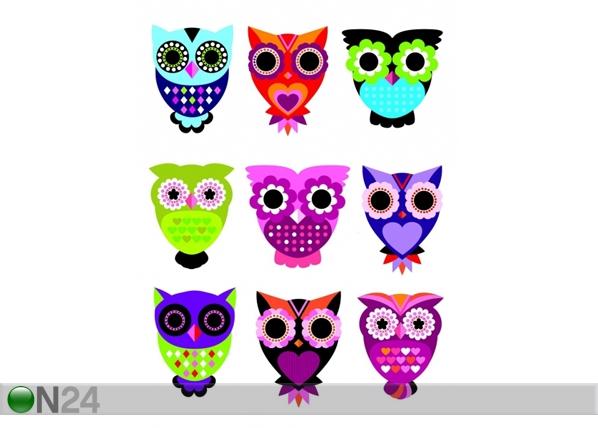Seinakleebis Owls 65x85 cm ED-98902