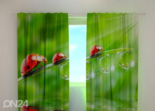 Poolpimendav kardin Ladybirds 240x220 cm ED-99307