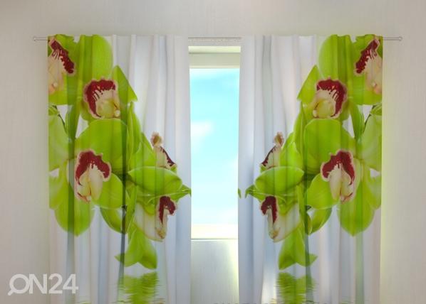 Läbipaistev kardin Lime coloured orchid 240x220 cm ED-99365