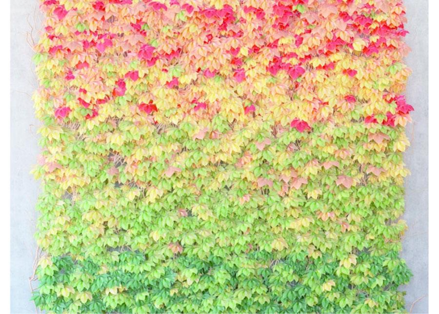 Fleece-kuvatapetti LEAVES 360x270 cm