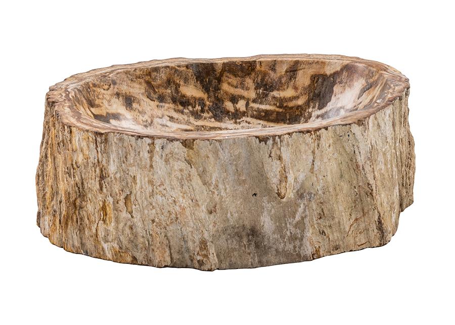 Pesuallas kivettynyttä puuta