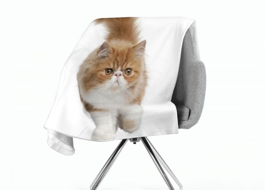 Torkkupeitto Fluffy Cat 130x150 cm