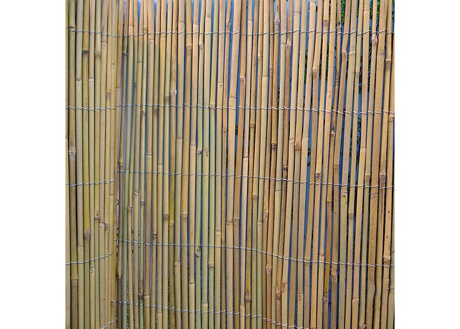 Bambuaita rullassa 1x5 m