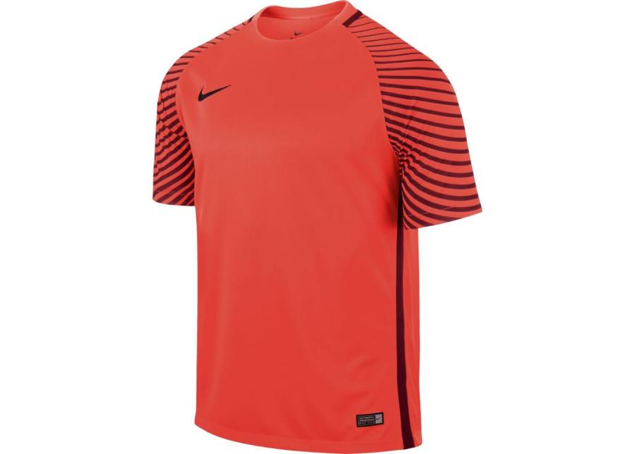 Miesten treenipaita Nike Gardien M 725889-671
