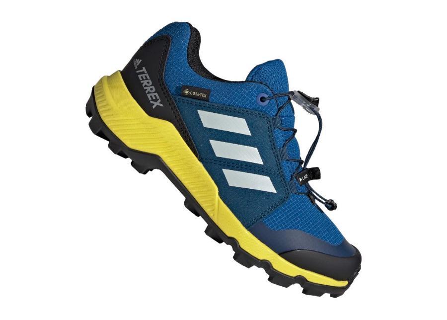 Lasten retkeilykengät Adidas Terrex GTX Jr BC0599