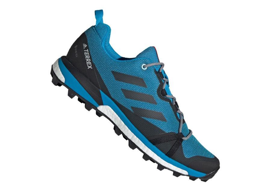 Miesten vapaa-ajan kengät Adidas Terrex Skychaser LT GTX M F36107